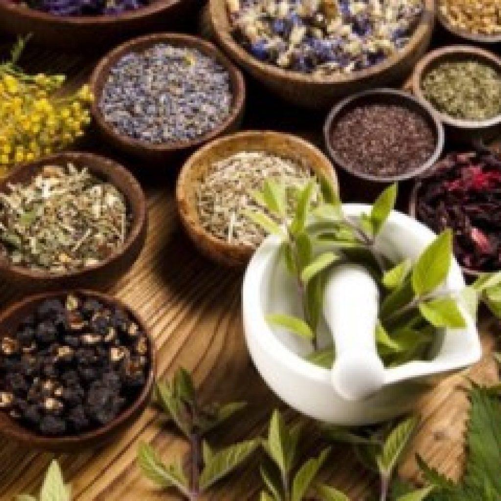 داروی گیاهی برای فعال شدن تخمدان