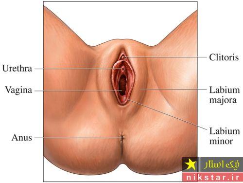 تنگ كردن واژن با آب انار