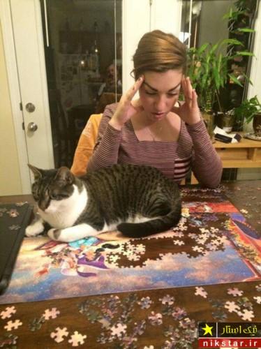 حرکات بامزه گربه های خانگی