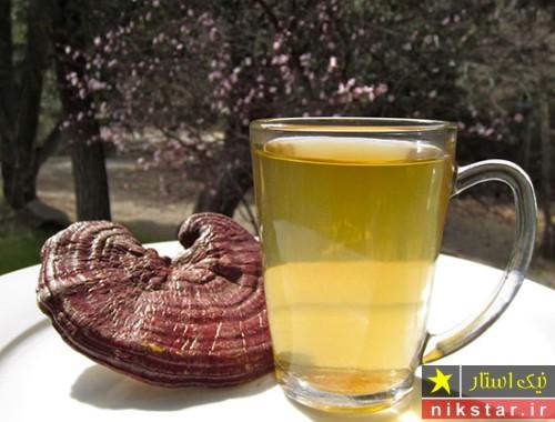 چای گانودرما یا چای ریشی
