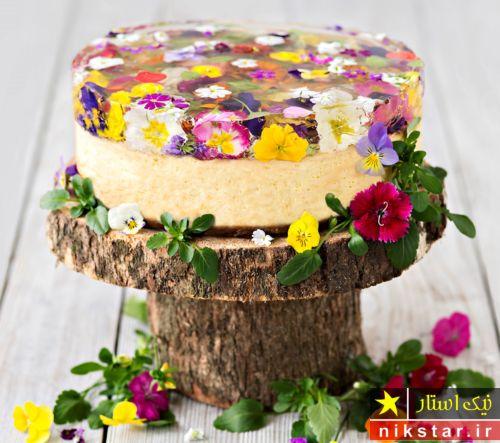تزیین کیک با ژله و گل طبیعی