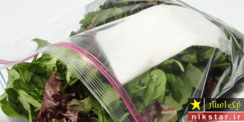 نگهداری سبزی خوردن