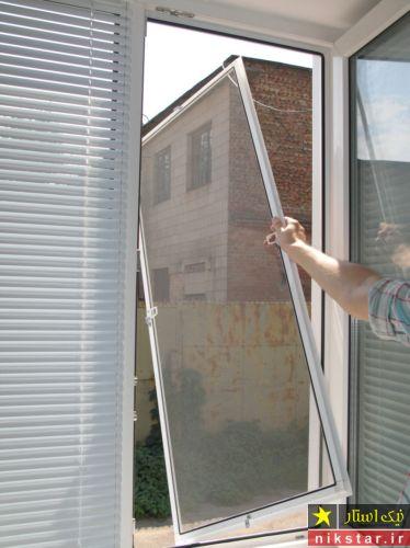 از بین بردن مورچه در خانه