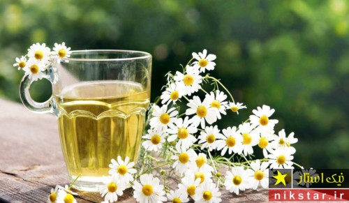 داروی گیاهی برای اسید معده