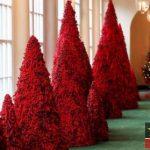 عکس های زیبا از تزیینات کریسمس ۲۰۱۹ در کاخ سفید