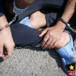دستگیری باند دزدان و سارقان خانه های مجلل شمال تهران
