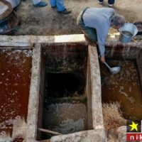 گزارش تصویری از تولید شیره انگور در شهرستان سبزوار
