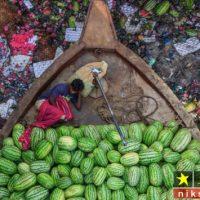 عکاس ایرانی در مسابقه محیط زیست گیوم ۲۰۱۸ اول شد + تصاویر