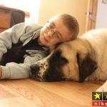 عکس های احساسی و پر از مهربانی در بین افراد دنیا