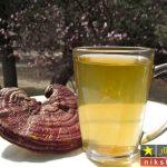 چای گانودرما یا چای ریشی برای تقویت سیستم ایمنی بدن