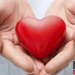 ۱۲ توصیه غذایی برای محافظت از قلب شما