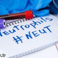 نوتروفیل neutrophils در آزمایش خون چیست بالا یا پایین بودنش نشانه چیست