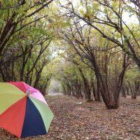 طبیعت زیبا پاییز اردستان ( شهرستان زیبای کویری )